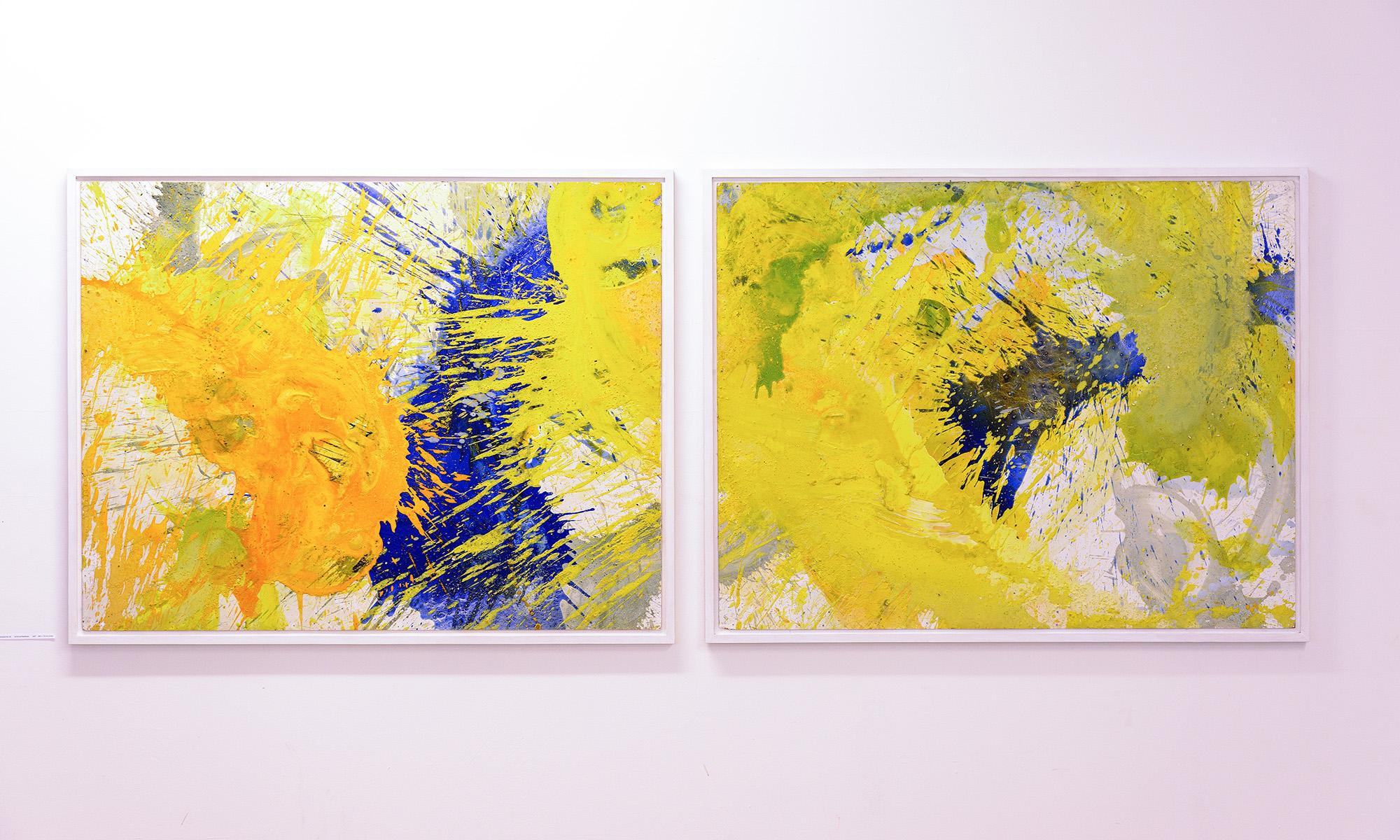 Infos zu meiner Kunst: Getanzte Malerei, Hydro-Prints, Mikrokosmos